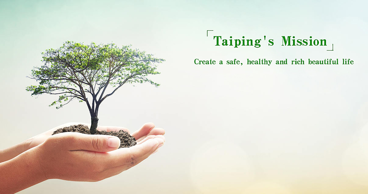 Taiping's Mission