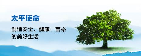 亚虎娱乐手机登录保险集团核心文化
